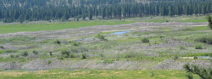Tailings from Sumpter Valley Gold Dredging