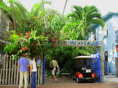Blue Heaven Restaurant Key West Florida