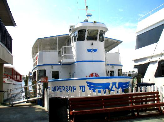 Capt anderson iii sight seeing boat at capt anderson 39 s for Captain anderson deep sea fishing