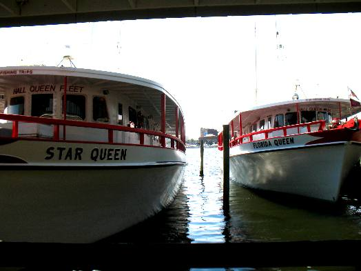 Star queen and florida queen at capt anderson 39 s marina on for Queen fleet deep sea fishing