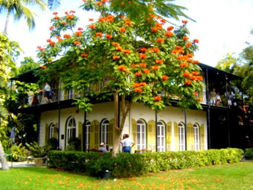 Hemingway House Key West And Tulip On Pinterest